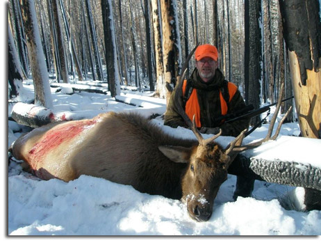 successful guided elk hunt