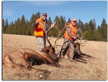 Rifle and bow elk hunts on private land